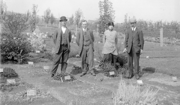The Original Botanical Office staff at botanical garden, circa 1913-1915
