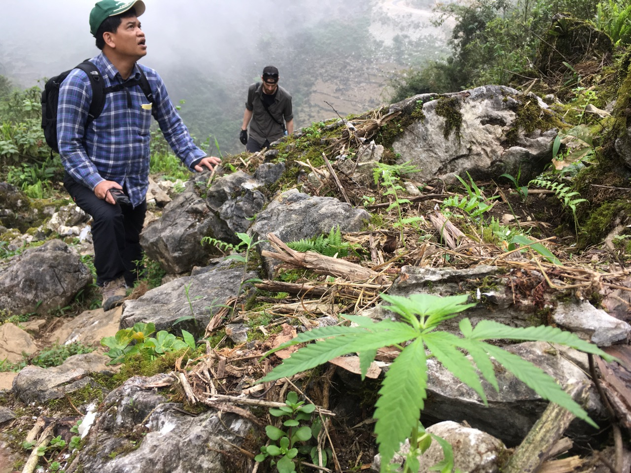 Quang and Thomas high on a steep, limestone-boulder-strewn slope newly cleared for planting crops.