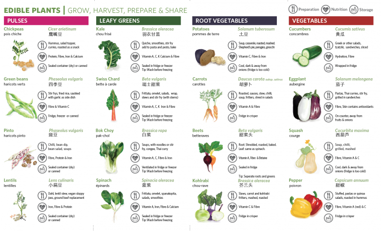 UBC Botanical Garden Food Guide lists plant names, nutrition and cooking instructions.
