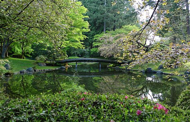 Nitobe Garden - lush vegetation around pond with a footbridge in background