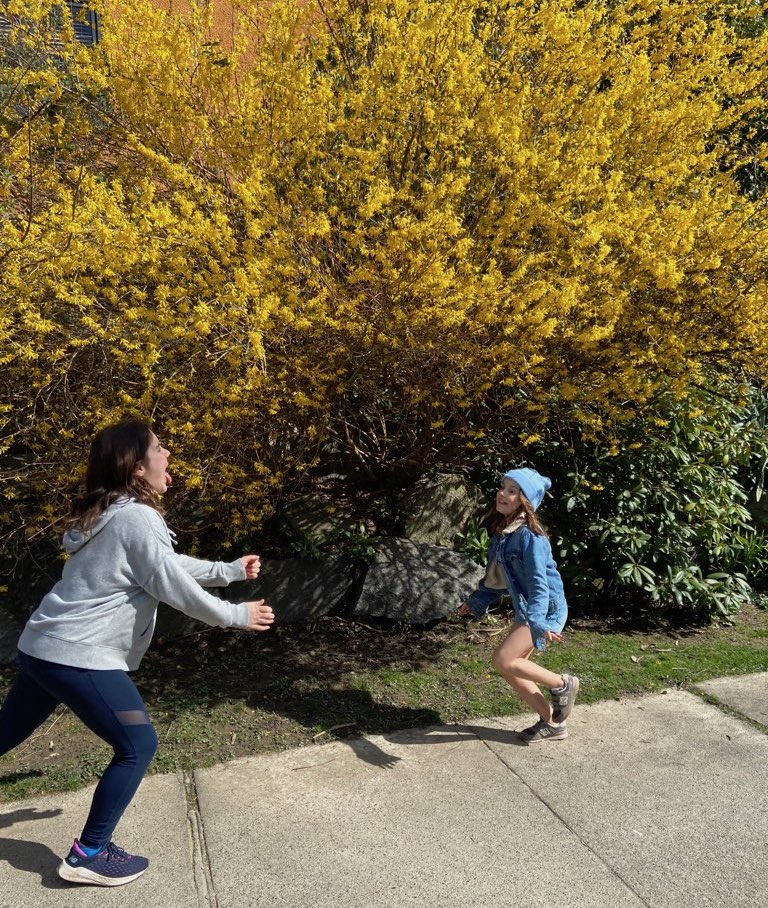 Two kids running towards each other in front of Forsythia bush