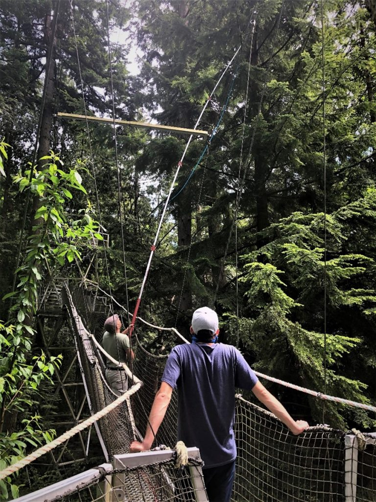 Milos and Brenden on the Greenheart TreeWalk using a tall rod to extract samples from conifers
