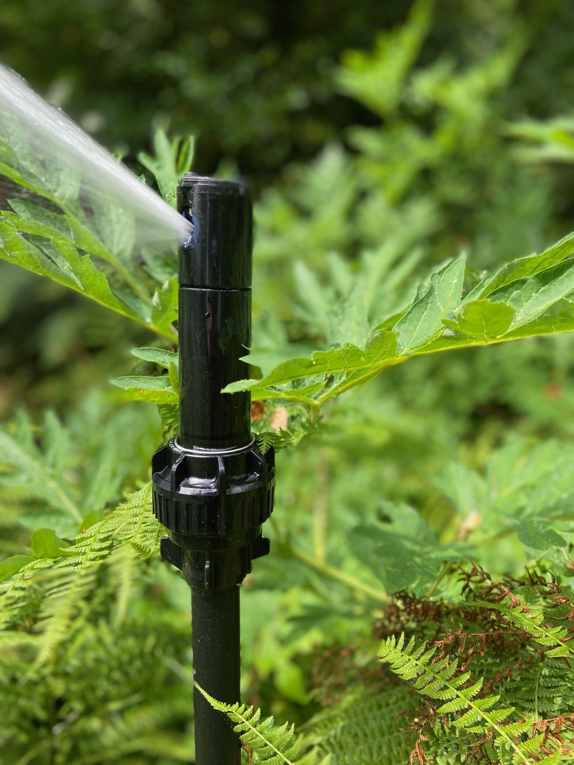 Close up of sprinkler