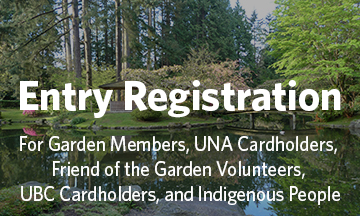 Nitobe Memorial Garden - click here to book your entry (for Garden Members, Friend of the Garden Volunteers, UBC Cardholders, UNA Cardholders, and Indigenous People)