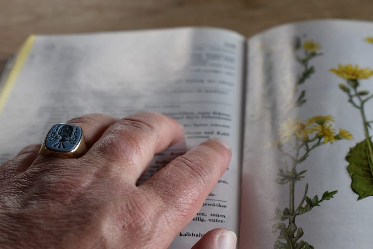Hand pointing on open page of botanical reference book